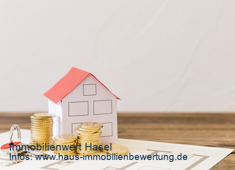 Immobilienwert Hasel