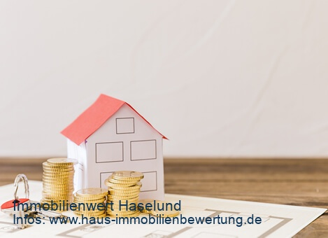 Immobilienwert Haselund